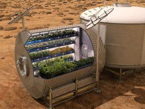 Conceção artística de uma estufa na superfície de Marte para produção de comida.